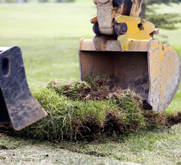 Grass Removal